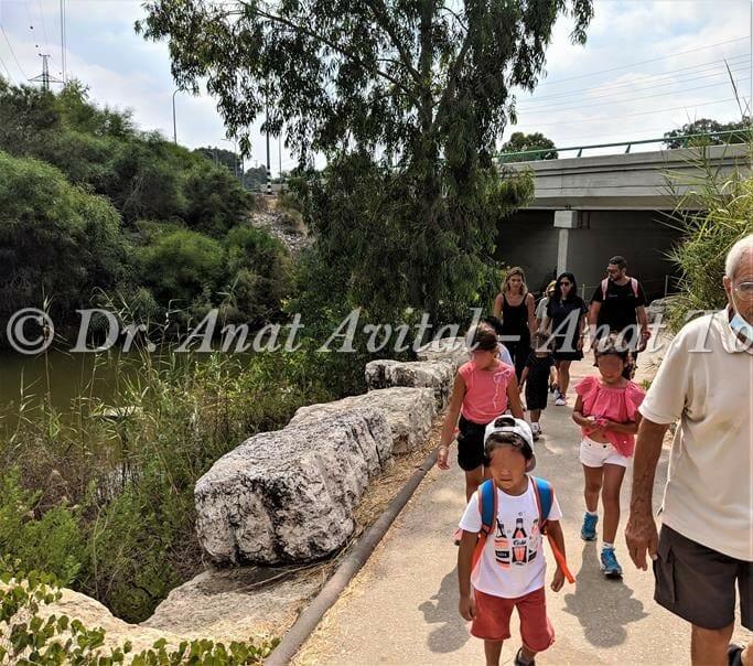 """טיול משפחות בשפך נחל שורק-פלמחים, נחל זורם, דיונות ואקליפטוסים ענקיים, צילום: ד""""ר ענת אביטל"""