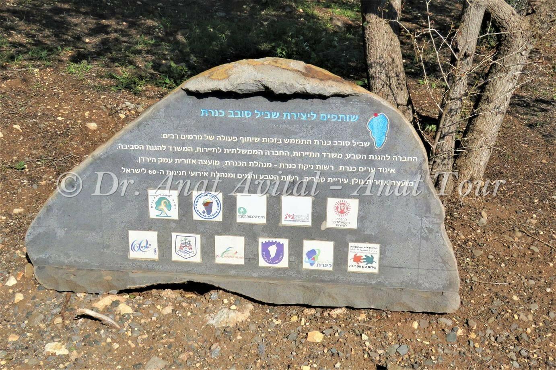 """גן לאומי כפר נחום וטיילת הבשורה, שביל סובב כינרת, צילום: ד""""ר ענת אביטל"""