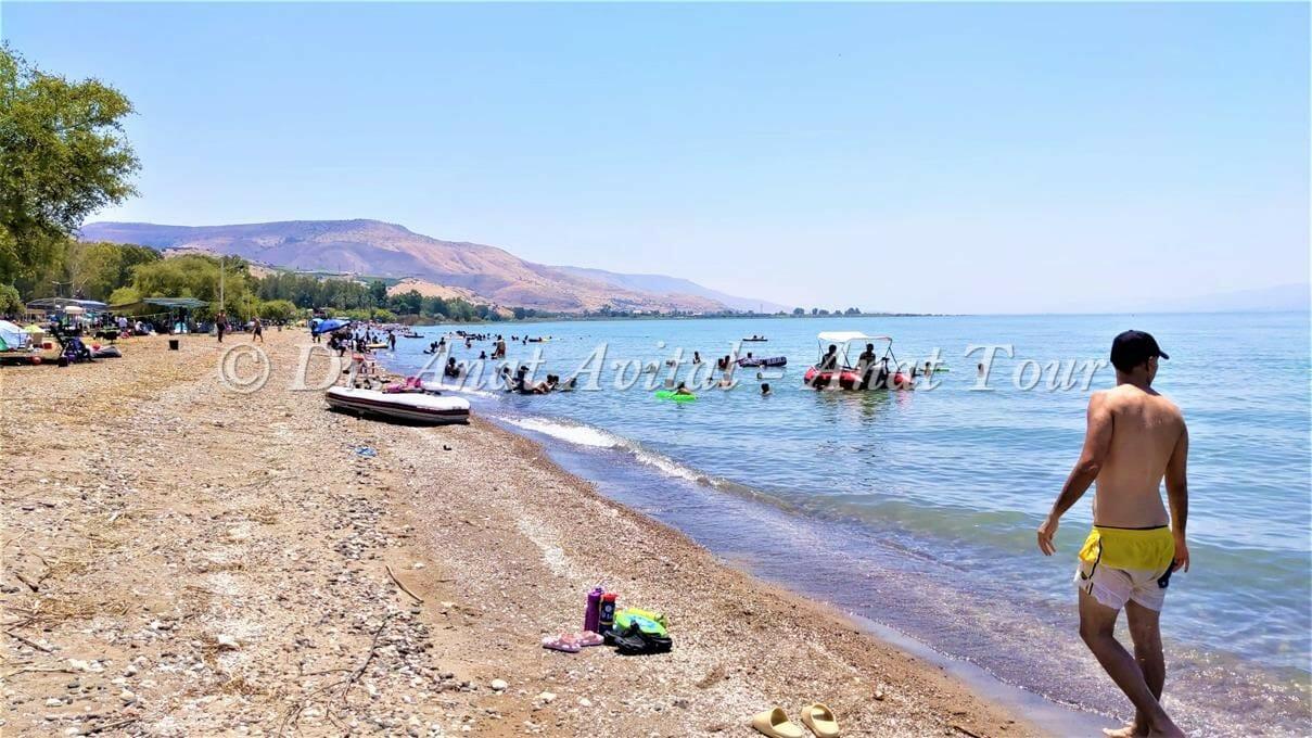 """קמפינג משפחתי ורחצה בחוף דוגית, שביל סובב כינרת, צילום: ד""""ר ענת אביטל"""