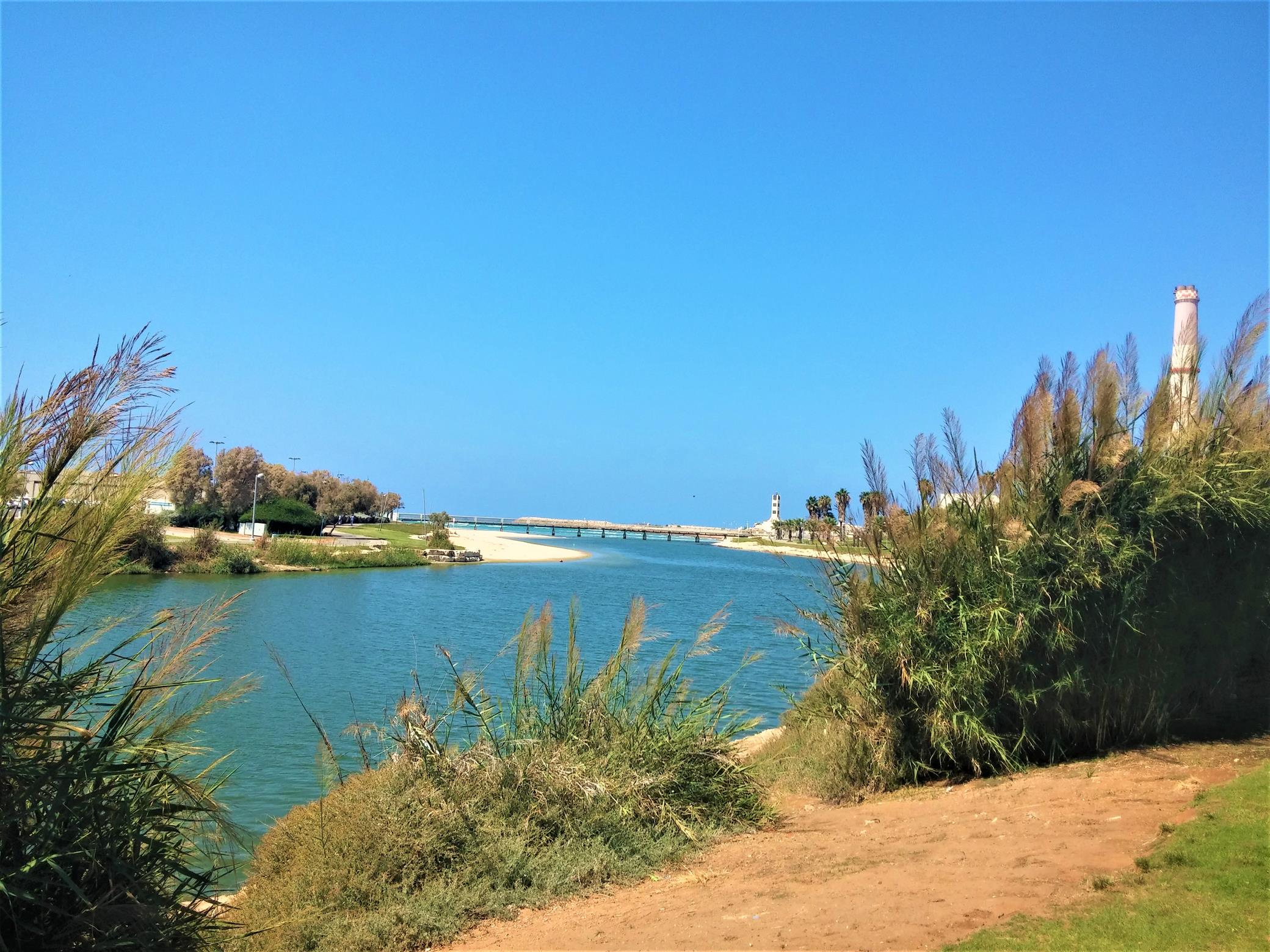 """שפך הירקון נמל תל אביב, צילום: ד""""ר ענת אביטל"""