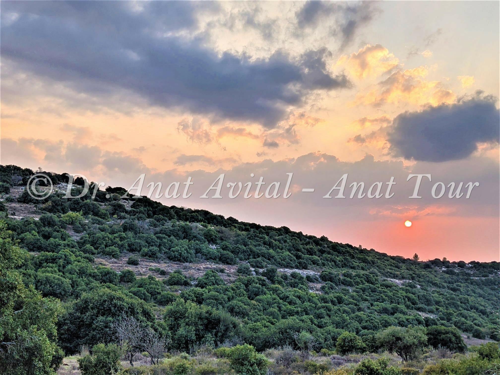 """שקיעה נהדרת בשמורת טבע סנסן, צילום: ד""""ר ענת אביטל"""