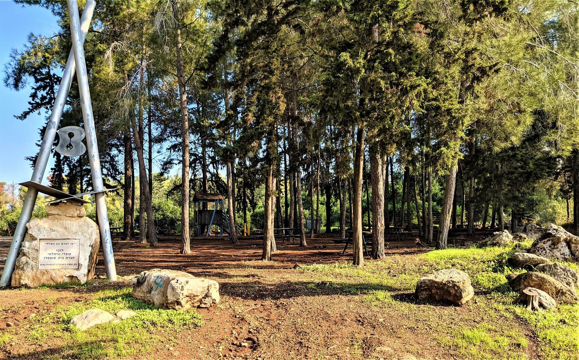 """חניון בזק ביער בן שמן, צילום: ד""""ר ענת אביטל"""