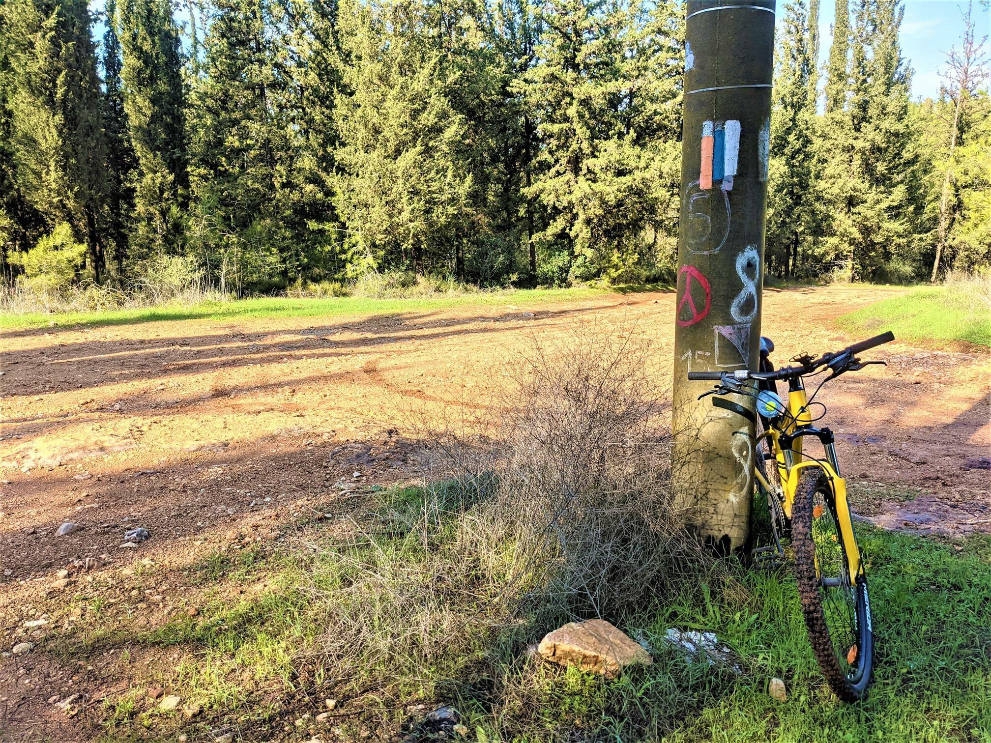 """שביל ישראל ביער בן שמן עם אופניים, צילום: ד""""ר ענת אביטל"""
