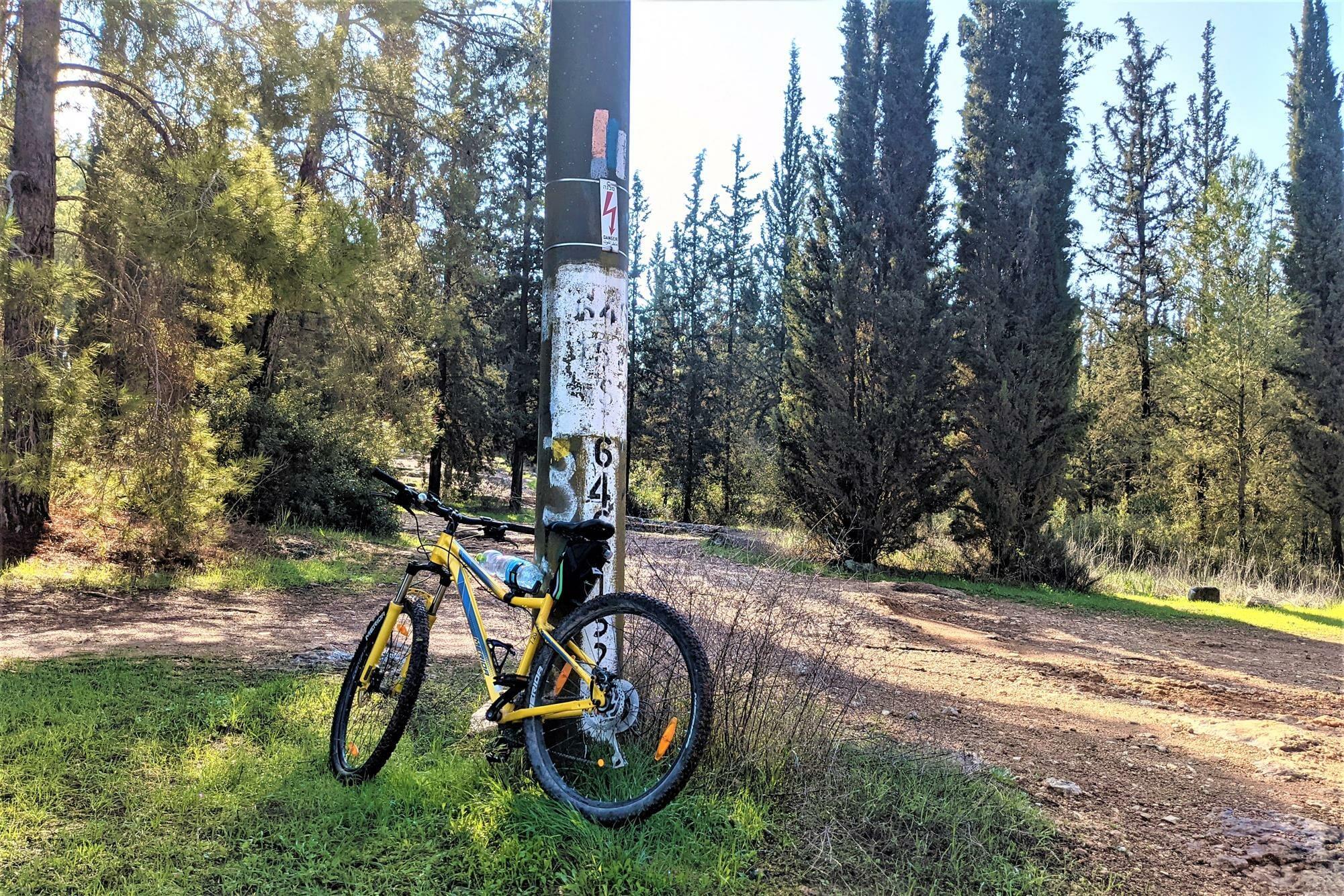 """שביל ישראל, מורדות נחל גמזו ביער בן שמן עם אופניים, צילום: ד""""ר ענת אביטל"""