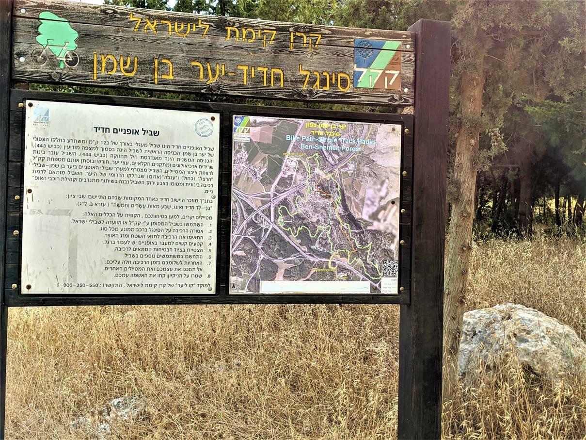 """סינגל אופניים חדיד יער בן שמן, צילום: ד""""ר ענת אביטל"""