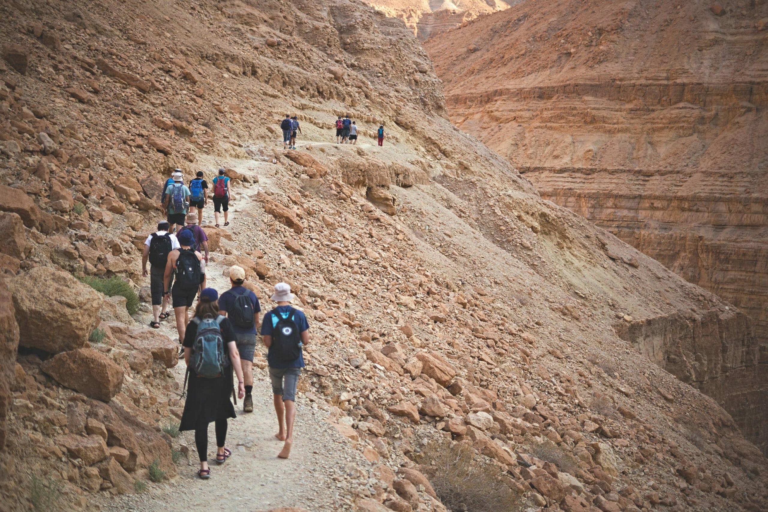 טיול חברת הייטק בריפקם לנחל ערוגות בשמורת עין גדי, צילום: יוסי אביטל