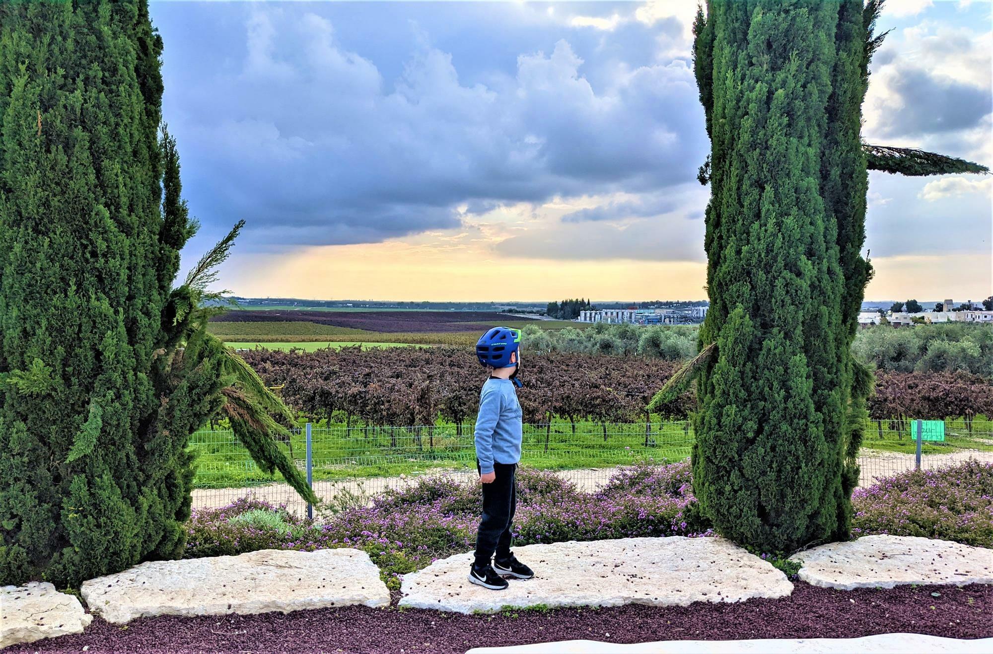 """אנדרטת טל צמח חולדה, סובב גזר, כרמים ונופים, מסלולי אופניים עם ילדים, לצד יער חולדה, צילום: ד""""ר ענת אביטל"""