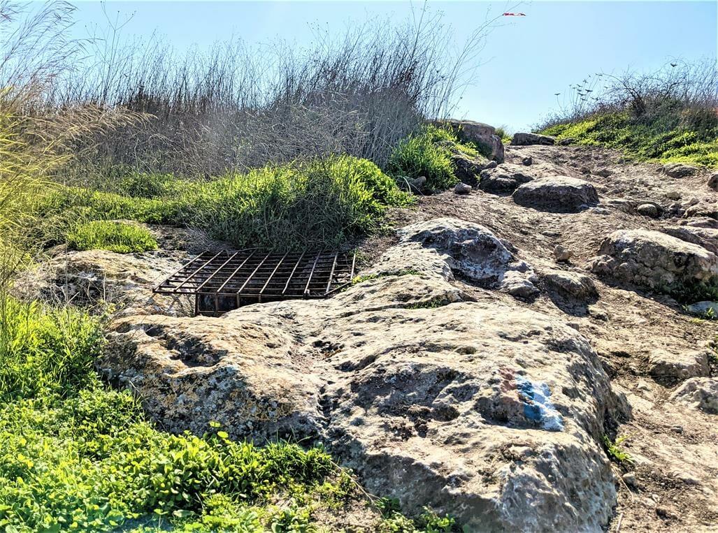 """בור מים, מצפה חן - חורבת רגב -יערות מודיעין, צילום: ד""""ר ענת אביטל"""