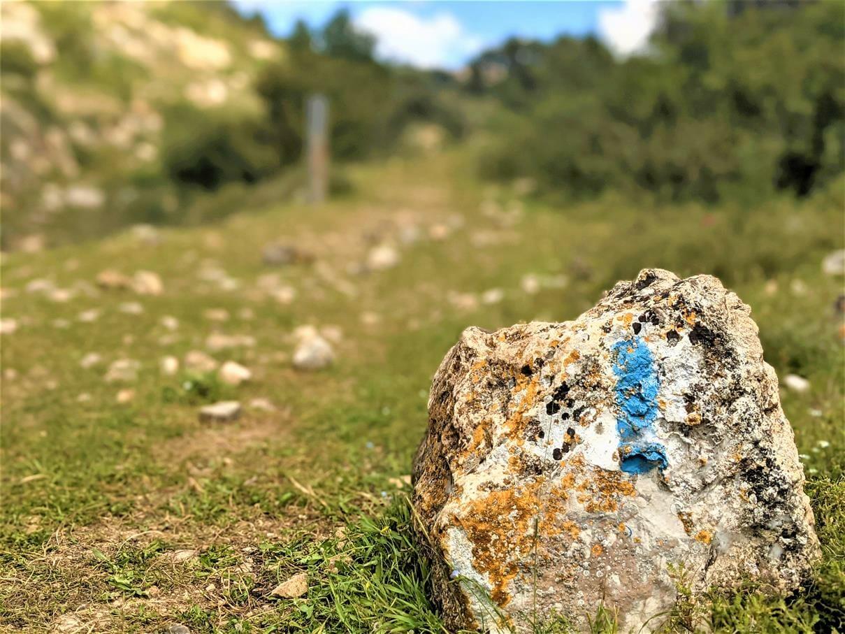 """ואדי אום טוח', משטחי סלע וגבים נאים, מעיינות פארק גיבורות התנ""""ך, צילום: ד""""ר ענת אביטל"""