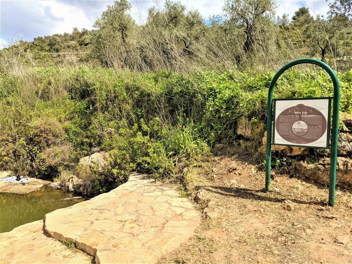 """עין רחל, פארק גיבורות התנ""""ך בגוש טלמונים בשומרון, צילום: ד""""ר ענת אביטל"""