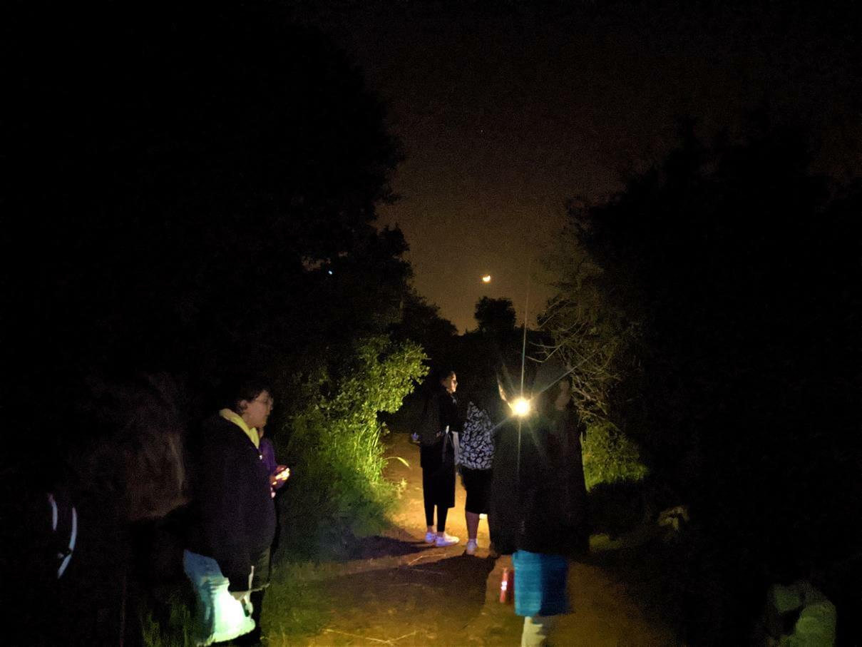 """טיול לילה הפעלות ועששיות לסמינר בנות חרדיות, צילום: ד""""ר ענת אביטל"""