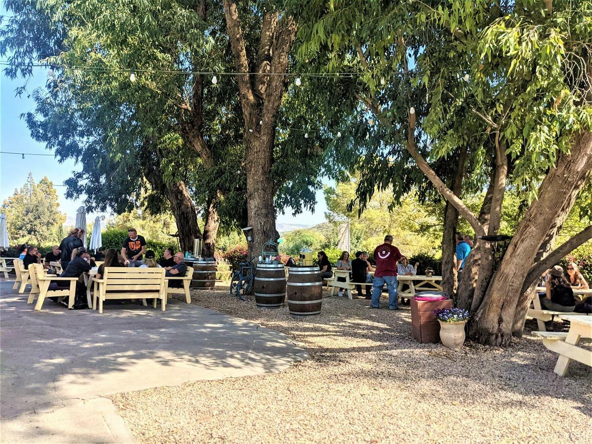 """ארוחת צהרים פסטורלית, טיול ויום כיף לחברת אלדן-ניאופרם, בעמק האלה, צילום: ד""""ר ענת אביטל"""
