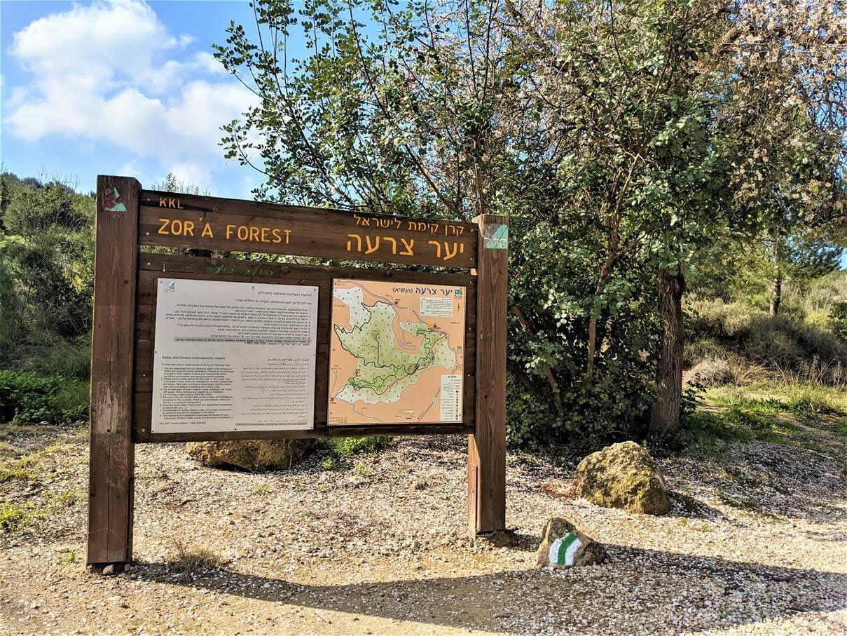 """כניסה לדרך הפסלים ביער צרעה-יער הנשיא, צילום: ד""""ר ענת אביטל"""