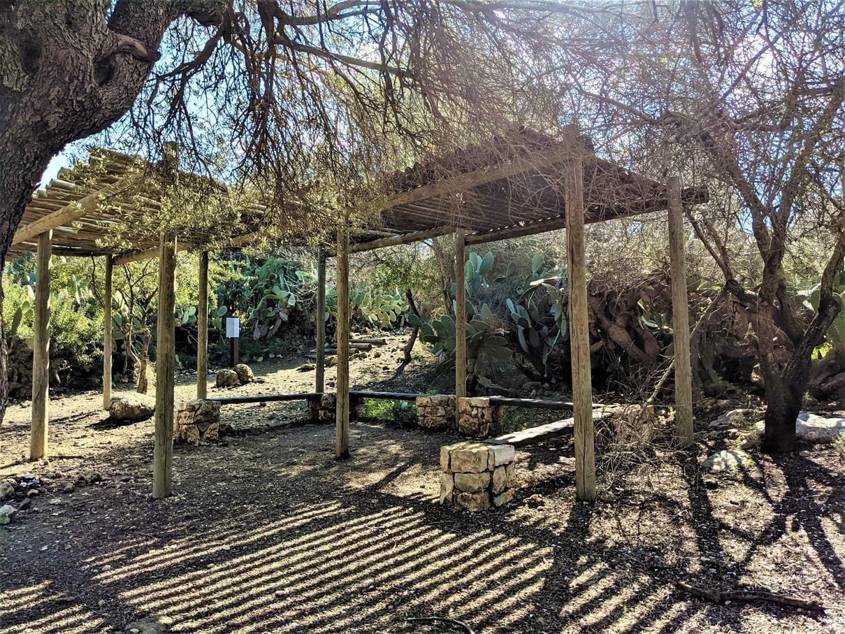 """עמדת ישבה להדרכה בצל, פארק שוודיה, יער צרעה-יער הנשיא, צילום: ד""""ר ענת אביטל"""