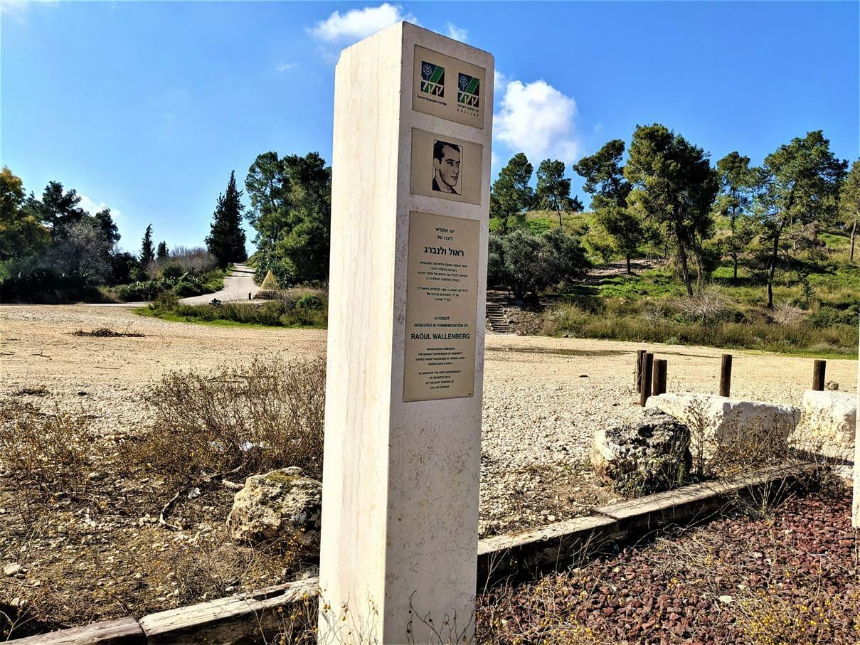 """עמוד זכרון לראול ולנברג בפארק שוודיה, יער צרעה-יער הנשיא, צילום: ד""""ר ענת אביטל"""