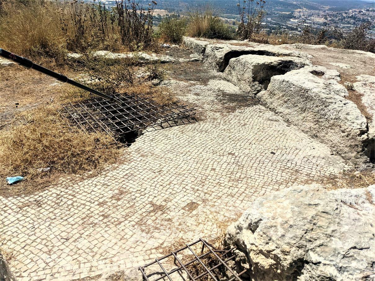"""גת קדומה סמוך לקבר שמשון הגיבור ומנוח אביו, תל צרעה, טיול מועדון סגל אוניברסיטת תל אביב, צילום ד""""ר ענת אביטל"""