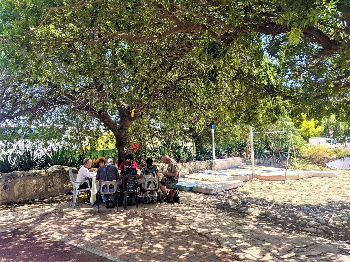 """טיול מועדון אוניברסיטת תל-אביב -ארוחת צהרים בצל עצי אלון תבור אצל מלאכי שביל ישראל במבוא חורון, צילום: ד""""ר ענת אביטל"""