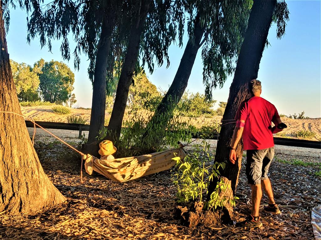 """טיול יום כיף גיבוש בנחל שורק למשפחות קבוצת לובינסקי 2021, בישולי שדה, פיתות, ערסלים, צילום: ד""""ר ענת אביטל"""