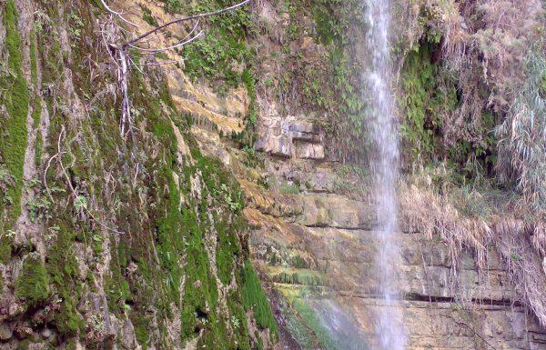 נחל דוד בשמורת עין גדי: טיול מים, מעיינות ומפלים במדבר יהודה