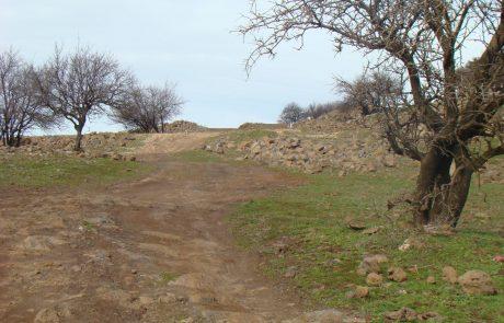 מהר אודם אל יער אודם: מתל געשי אדום אל יער מסתורי בצפון הגולן