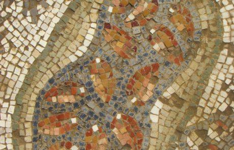 """תיאורים צמחיים של ענפי חקלאות מירושלים ויהודה בתקופות הרומית המאוחרת והביזנטית: מאמר מאת ד""""ר ענת אביטל"""