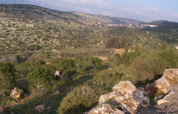 מחורבת חנות לעין מטע ועין תנור: טיול מעיינות יפים בהרי יהודה
