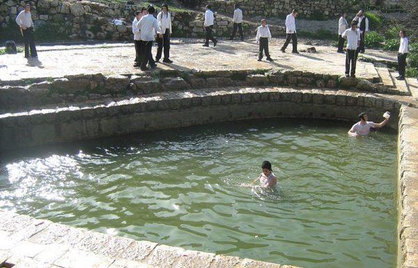 ליפתא (ליפתה) בכניסה לירושלים: טיול פסטורלי ליום כיף קסום בטבע בלב העיר