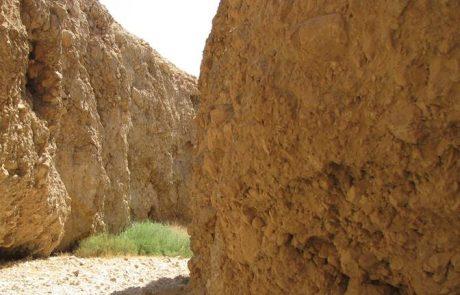 נחל סלוודורה: קניון קצר, יבש ומעט אתגרי במדבר יהודה