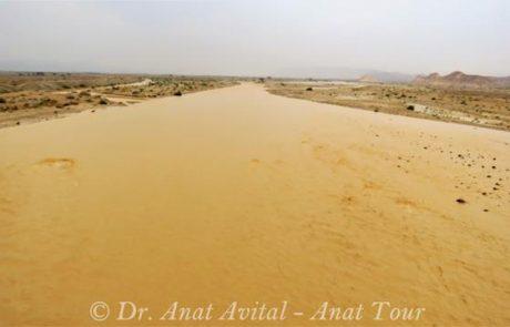 שיטפון בנחל פארן בכביש הערבה, אפריל 2017