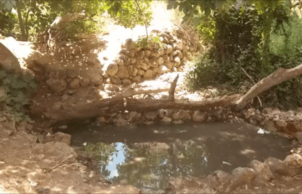 טיולים מומלצים בהרי ירושלים: 3 מסלולים מדהימים לטיול כיף שאסור לכם לפספס