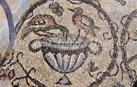 פסיפס מפואר מקיסריה: עופות, יונקים וחיי הכרם