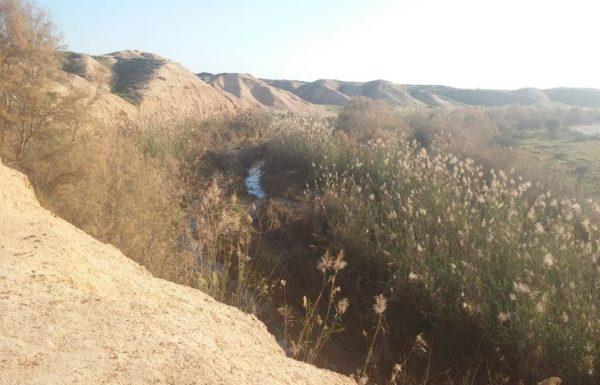 דרך נוף נחל הבשור: טיול רכוב בנגב המערבי