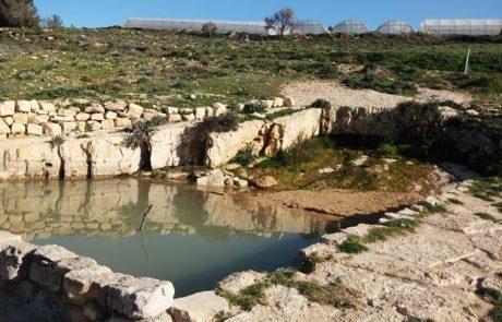 טיול בגוש עציון לעין מסלע עין כלב (עין אבו-כלאב) בהרי יהודה