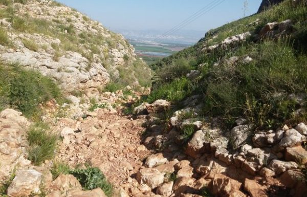נחל יצפור בגלבוע: מסלול אתגרי לא קשה בצפון