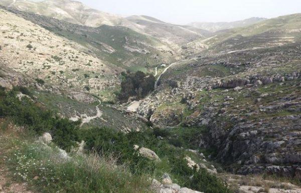 עין פרת (ואדי קלט): טיול מים ומעיינות יפים בצפון מדבר יהודה