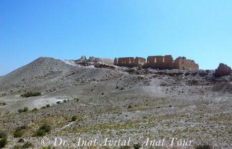 גן לאומי תל ניצנה – עוג'ה אל חפיר
