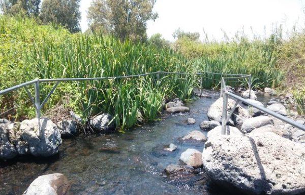 טיול לעין תינה בגולן: טיול מים מושלם לכל המשפחה עם הילדים בצפון הירוק