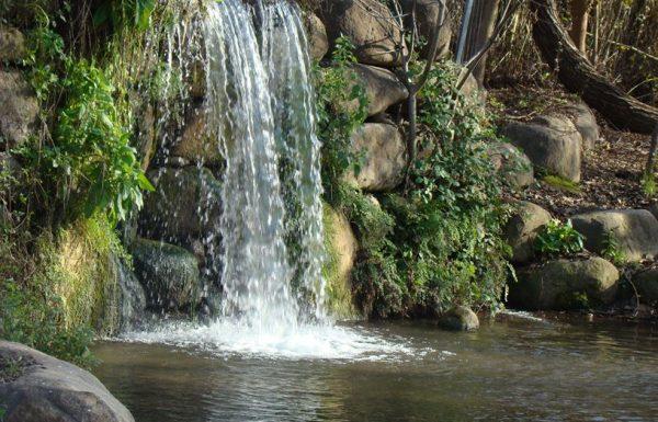 נחל שניר- חצבני: מים בצפון