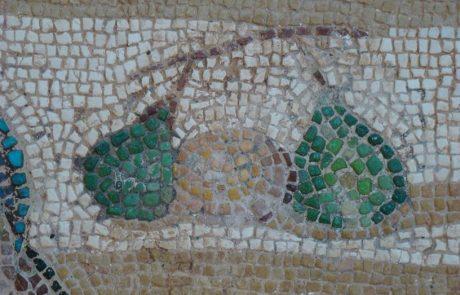 עיצובים צמחיים מציאותיים של אגסים בפסיפסים מן התקופות הרומית והביזנטית