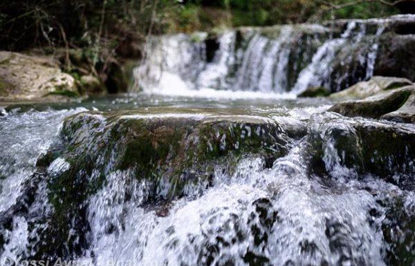 נחל השופט: טיול מים קליל וקצר בצפון לכל גיל ולכל עונה