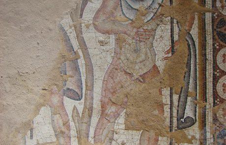 ריבוי עצי פרי באמצעות הרכבה: חשיפת סודות הפסיפסים מהתקופה הרומית והביזנטית