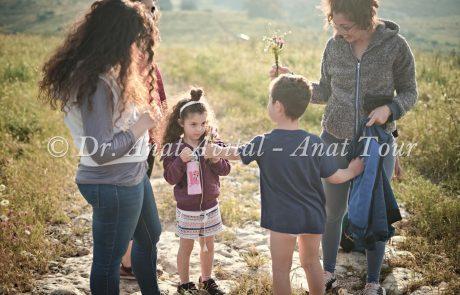 חופשת קורונה-פסח 2020: לאן רציתם לטייל עם הילדים והמשפחה- מעודכן 5.5.20