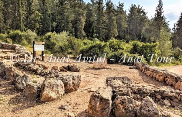 שביל הבורות והבארות בתל עזקה בשפלת יהודה
