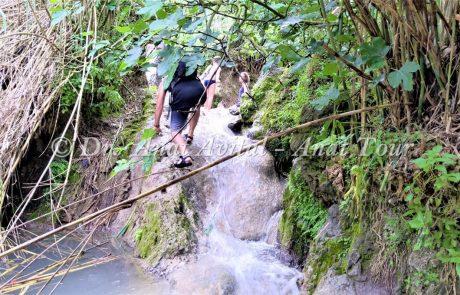מפלי עין ריחניה בנחל השופט: ברכות ומגלשות מים קרירים לכל המשפחה