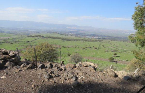 תל פאחר – מצפה גולני: טיול בצפון לאתר הנצחה ומורשת קרב
