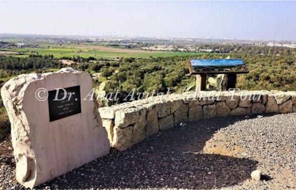 תל חדיד: אתר ארכאולוגי וגבעת תצפית נהדרת אל המרכז וגוש דן