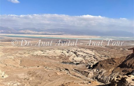 נחל חווארי מצדה: טיול אתגרי קצר לכל המשפחה במדבר יהודה