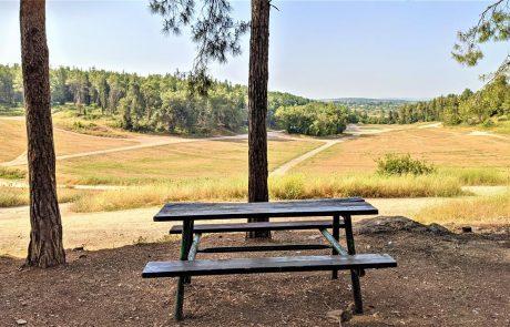 יער בן שמן ומודיעין: מסלולי טיולים, חניונים, אתרים נחלים וצמחייה