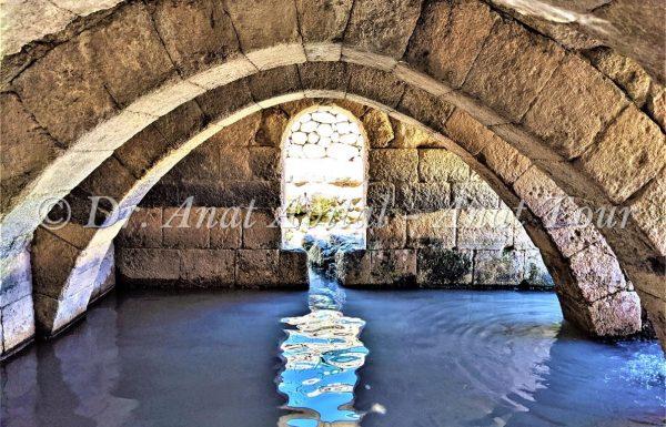 בית הקשתות: ברכת מים טובה לרחצה ושכשוך בעמק איילון, מודיעין