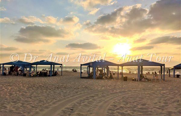 חוף זיקים, נחל שקמה ומאגר שקמה: החוף היפה והדרומי בישראל